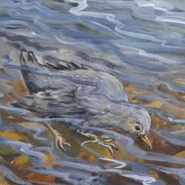Dawn Senior-Trask - Bird Underwater