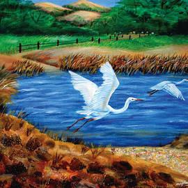 Johnson Moya - Birds Flying On The Lake