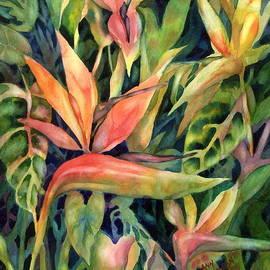 Ann  Nicholson - Birds of Paradise