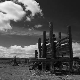 Edward R Wisell - Black and White Corral