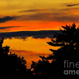 Carol F Austin - Blazing Sunset Panorama