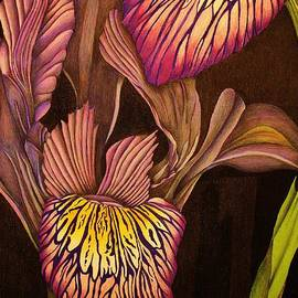 Bruce Bley - Blooming Irises