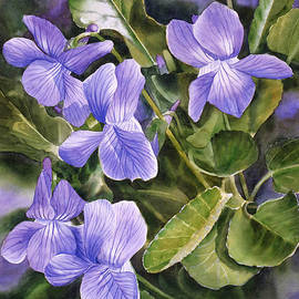 Sharon Freeman - Blue Dog Violets