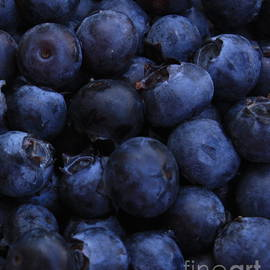 Carol Groenen - Blueberries Close-Up - Vertical