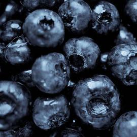 Daniel Kulinski - Blueberries