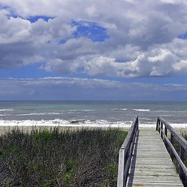 Sandi OReilly - Boardwalk To The Beach