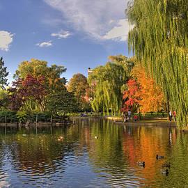 Joann Vitali - Boston Public Gardens
