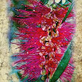 Judi Bagwell - Bottlebrush