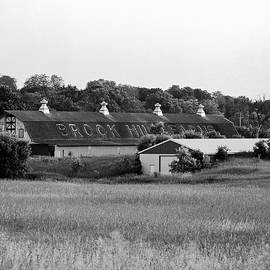 Jan Faul - Brook Hill Dairy Farm