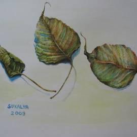 Sukalya Chearanantana - Buddha Leaf 1
