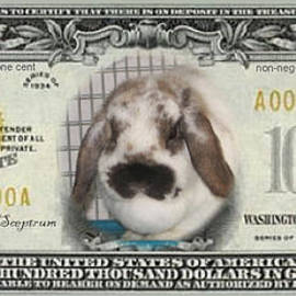 Renee Trenholm - Bunny Money