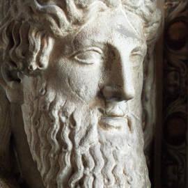 Michael Flood - Bust Of Bearded Male