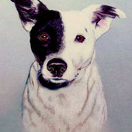 Bob and Nadine Johnston - Butch the Smooth Fox Terrier