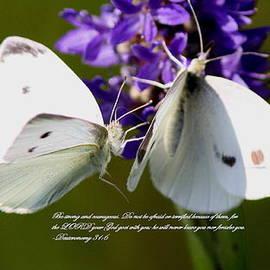 Travis Truelove - Butterfly - Dueteronomy 31 6