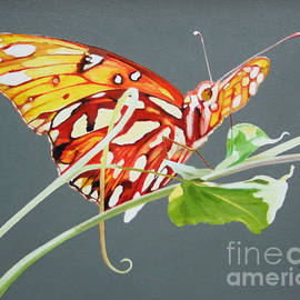 Jimmie Bartlett - Butterfly on Vine