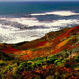 Bob and Nadine Johnston - California Coastline