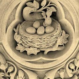 Rob Hans - CHICKS in STONE in SEPIA