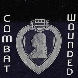 LeeAnn McLaneGoetz McLaneGoetzStudioLLCcom - Combat Wounded