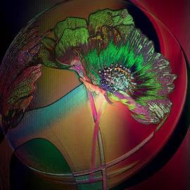 Irma BACKELANT GALLERIES - Comely Cosmos