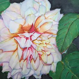 Christiane Kingsley - Dahlia Beauty