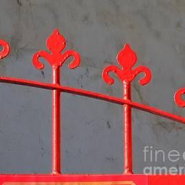 Yali Shi - Detail of a Red Iron Gate
