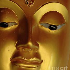 Bob Christopher - Detail Of Buddha