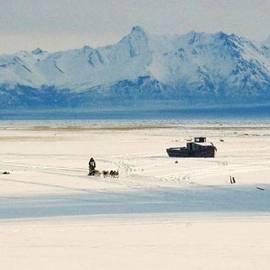 Juergen Weiss - Dog Musher at Cook Inlet - Alaska