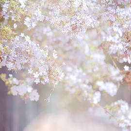 Jenny Rainbow - Dreaming of Spring