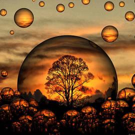Lorainek Photographs - Dreamscape 5