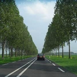 Cor De Jong - driving home