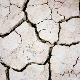 Betsy Barron - Drought