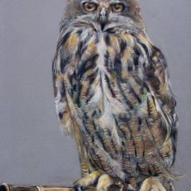Tanya Patey - Eagle Owl