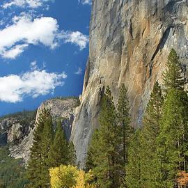 Floyd Hopper - El Capitan Autumn