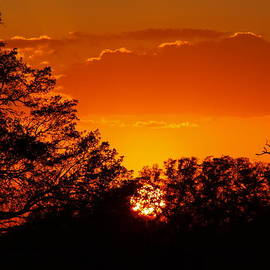 James Granberry - Escape Of A Golden Sun