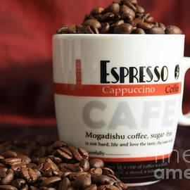 Tracy  Hall - Espresso Cappuccino Beans