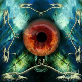 Rosa Cobos - Eve S Eye