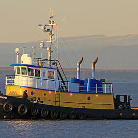 Sam Amato - Evening Tug Boat