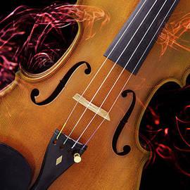 M K  Miller - Excited Violin Fiddle