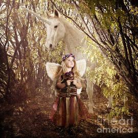 Cindy Singleton - Fairy and Unicorn