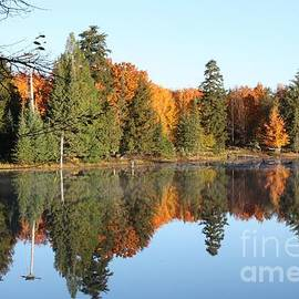 Dave Knoll - Fall Reflections