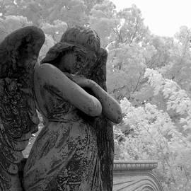 Jane Linders - Fallen Angel