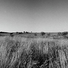Jan Faul - Farm and Wind Farm