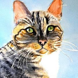 Susan  Clark - Farm Cat