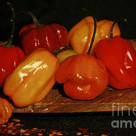 Inspired Nature Photography By Shelley Myke - Fire up the Grill