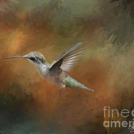 Cris Hayes - Flight of the Angel
