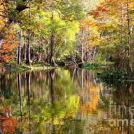 Carol Groenen - Florida Autumn Secret