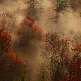 Ulrich Burkhalter - Fog in the valley