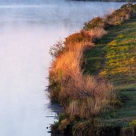 Roy Williams - Fog Over The Lake