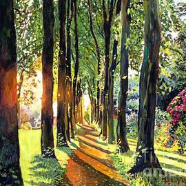 David Lloyd Glover - Forest of Enchantment