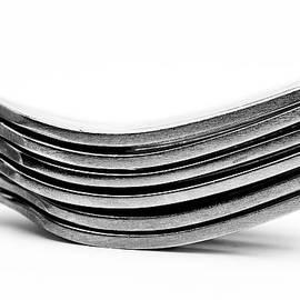Onyonet  Photo Studios - Forks